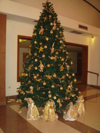 Agria, Yunanistan: Χριστουγεννιάτικος Στολισμός