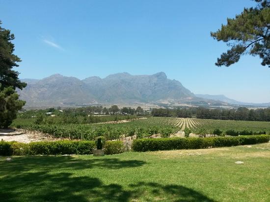 Franschhoek, Sudafrica: Topiary Wines