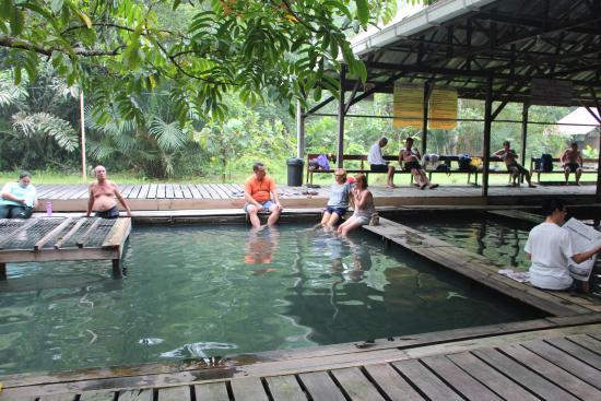 Kuching, Malezja: Хот спринг-приятное тихое место