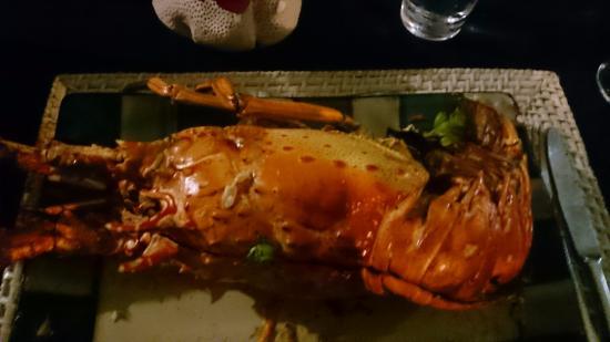 Aqua Restaurant: Large Lobster