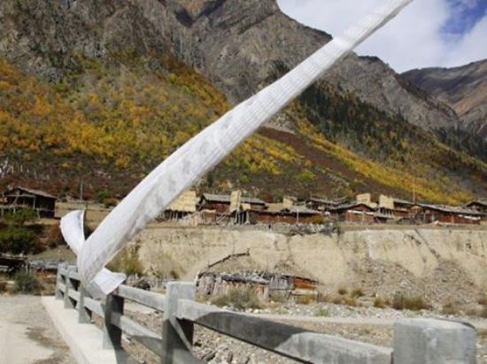 Bomi County, Китай: Midui Glacier, 米堆冰川