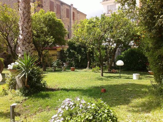 Carlton International Hotel: beautiful garden