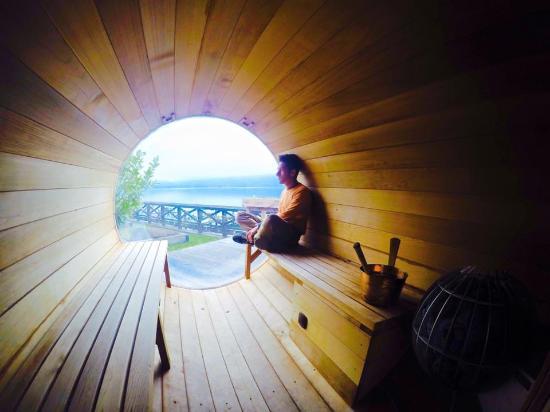 Veyrier-du-Lac, France : la sauna