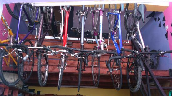 Bicycle Rental - Location de velo Rabat