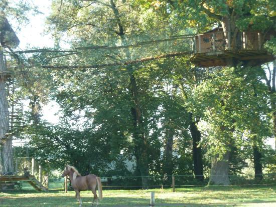 Domaine De Poiseuil : Pont de singe pour accéder à la cabane perchée