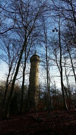 Humberg Tower