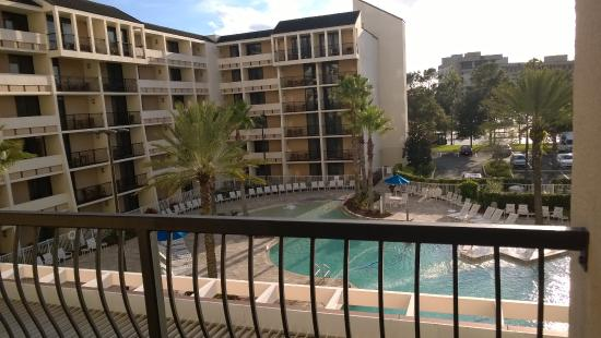 pool is cool picture of holiday inn orlando disney. Black Bedroom Furniture Sets. Home Design Ideas