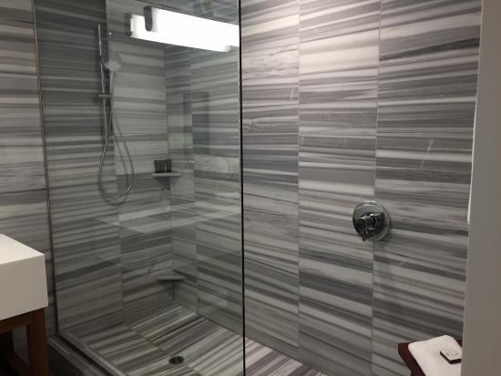 Hyatt Centric The Pike Long Beach: Shower