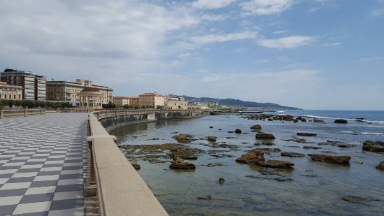 Terrazza Mascagni - Bild von Terrazza Mascagni, Livorno - TripAdvisor