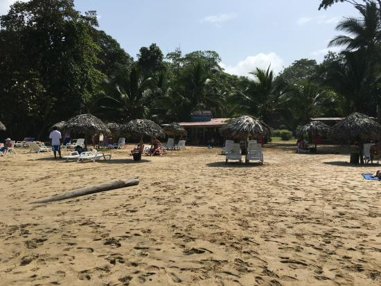 La Loma Jungle Lodge and Chocolate Farm: The beach is just a short boat ride away