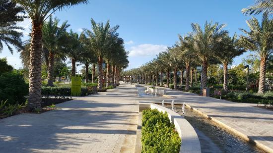 حديقة أم الإمارات