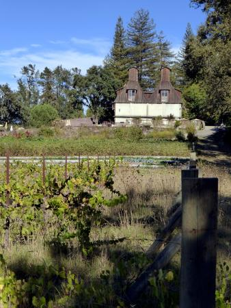 Forestville, CA: View back to old house from grounds