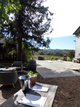Forestville, CA: View from outdoor tasting area