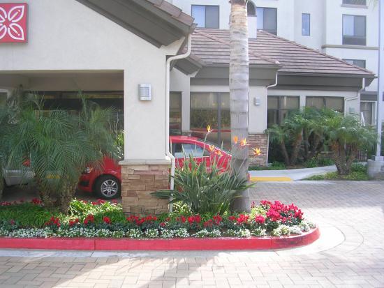 hilton garden inn san diego del mar lovely landscaping - Hilton Garden Inn San Diego Del Mar