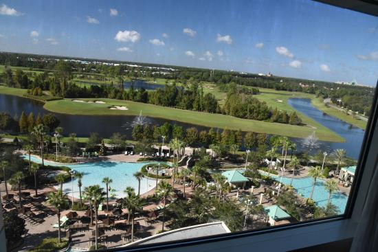 Pool area and view picture of hilton orlando bonnet for Pool show in orlando 2016