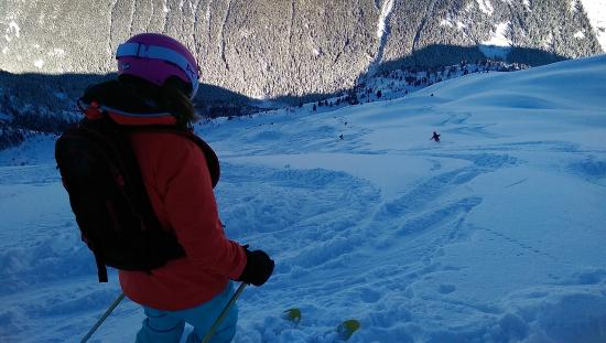 Whistler Heli-Skiing: Bringing up the back of the group