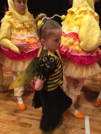 Cincinnati Ballet: One of the Little Bumblebees!!