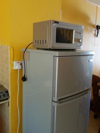 Elysee Residence: To use the microwave, unplug the fridge!