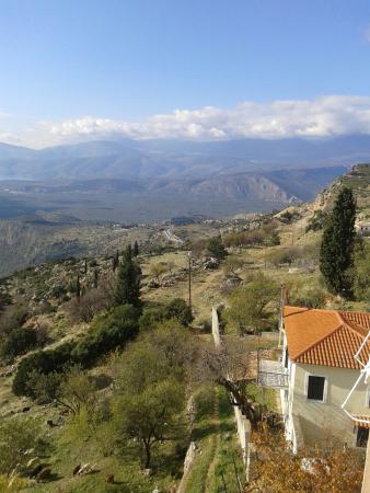 Hotel Acropole Delphi: θέα από δωμάτιο