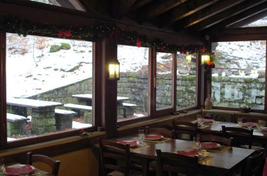 Sala da pranzo in veranda con vista bosco picture of for Sala da pranzo veranda