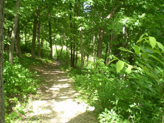 Bagley, WI: Hiking Trail