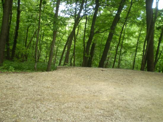 Bagley, WI: A Wisconsin Ridge Campsite