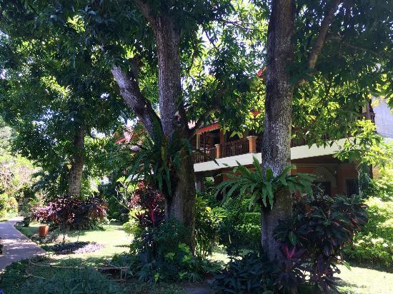 Hotel Puri Cendana: Le jardin