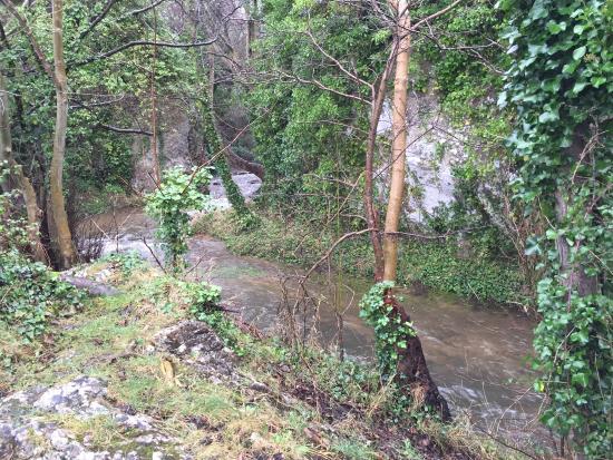 Dyserth, UK: a small stream feeding a monster