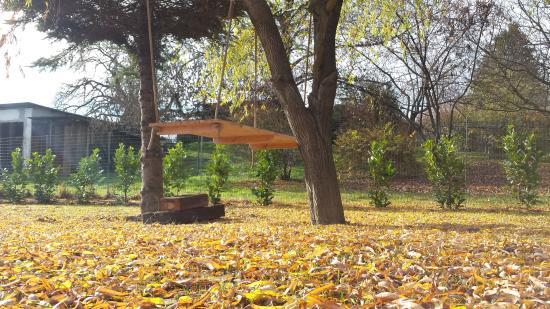 Kukmirn, Oostenrijk: Baumbett im Arkadenhof Garten