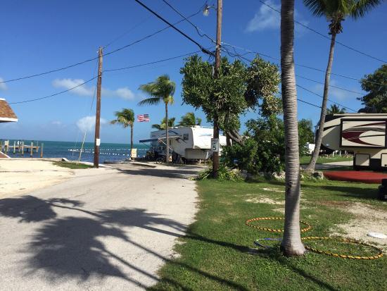 Jolly Roger Travel Park: photo4.jpg