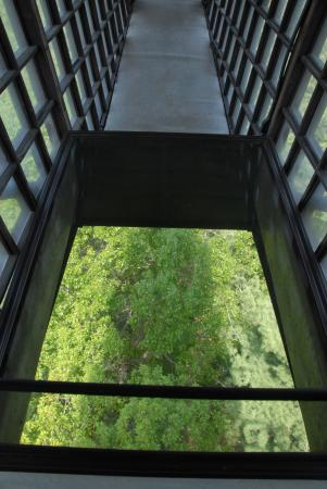 House on the rock infinity room