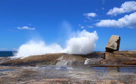 Tazmanya, Avustralya: Bicheno
