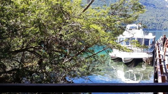 Bosque De Alerces Milenarios : excursion alerzal
