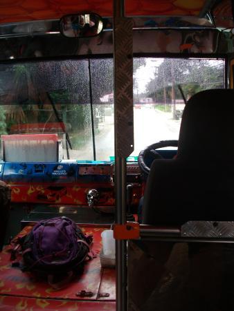 Halcyon Palm: reggae bus - must experience