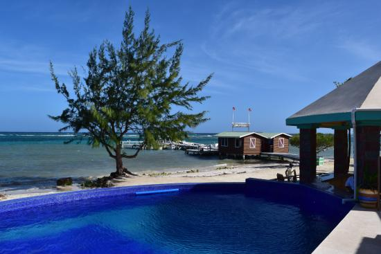 Turneffe Island, Belize: Pool