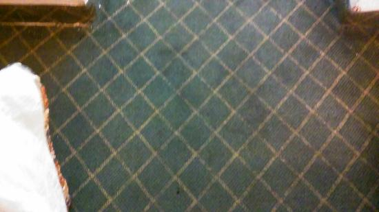 Days Inn West Palm Beach: Cigarette hole in blanket and floor is filthy,looks like someone rebuilt and engine on the floor