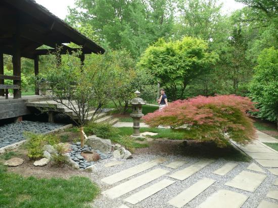 Japanese Garden Picture Of Cheekwood Botanical Gardens