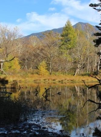 紅葉の頃の泉門池