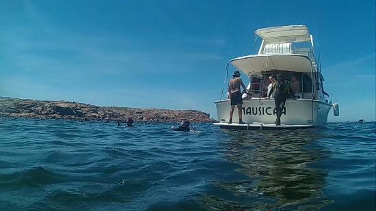 Scuba Divers Uruguay