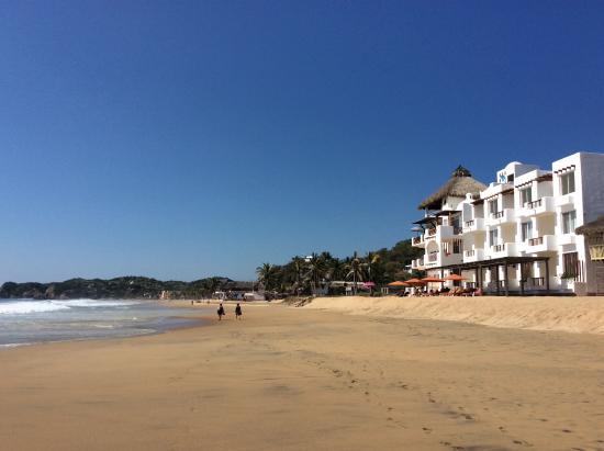 Hotel Estrella de Mar: Hotel and Zipolete beach