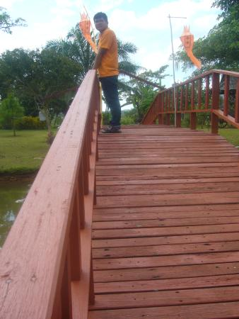 Golden Pine Resort : สะพานเดิมข้ามคลองดูวิวรอบรีสอร์ท