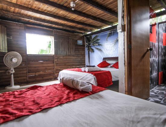 Ecolodge Nautilos: Nuestras habitaciones