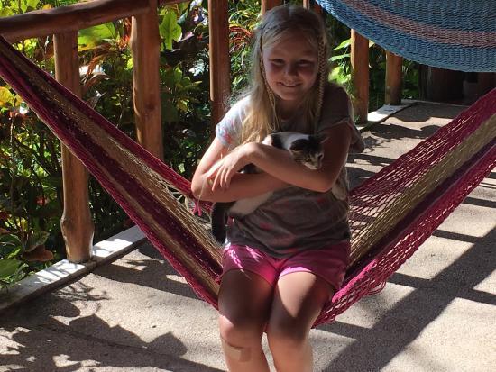 El Sueno Tropical : chilling out