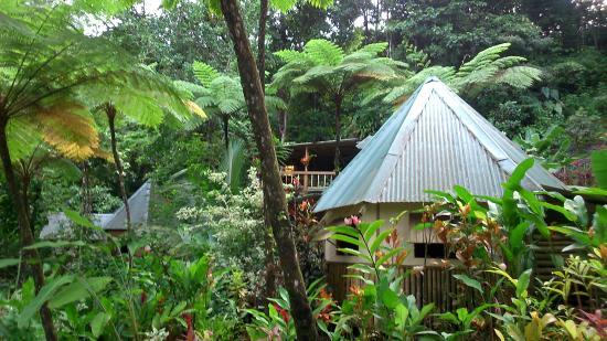 Marigot, Dominica: Aperçu du resort