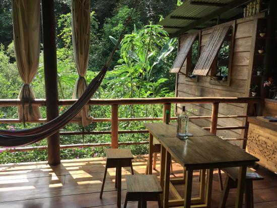 La Loma Jungle Lodge and Chocolate Farm: The main lodge