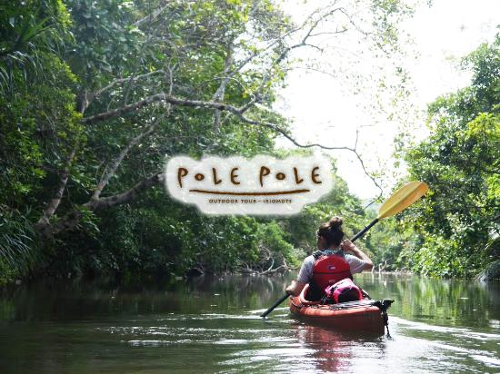 Iriomote Island Pole Pole - Day Tour