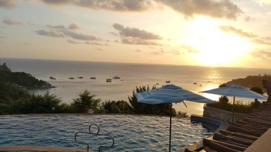 Ko Tao Resort: สระว่ายน้ำ Paradise Zone