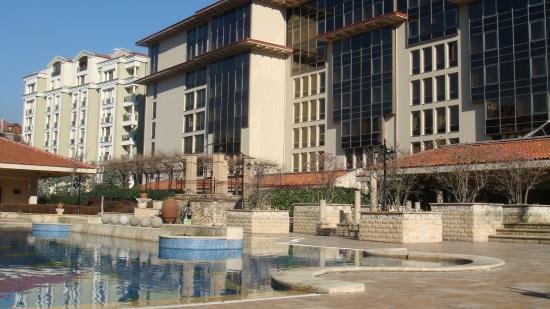 Grand Hyatt Istanbul: бассейн