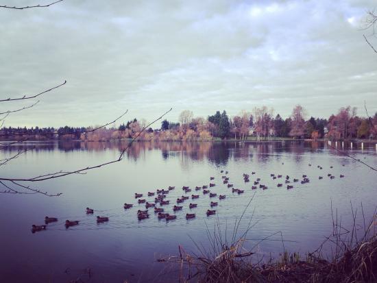 Green Lake Park : photo0.jpg
