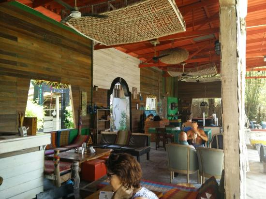 Elephant Bay Resort: IMG_20151229_075423_large.jpg